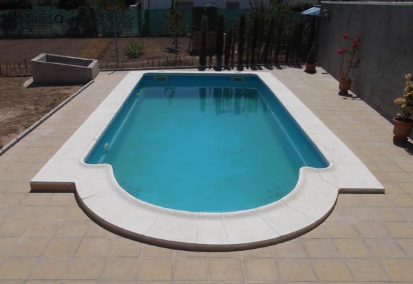 Piscina modelo bilbao 8 x 4 metros piscinas lion for Piscinas economicas